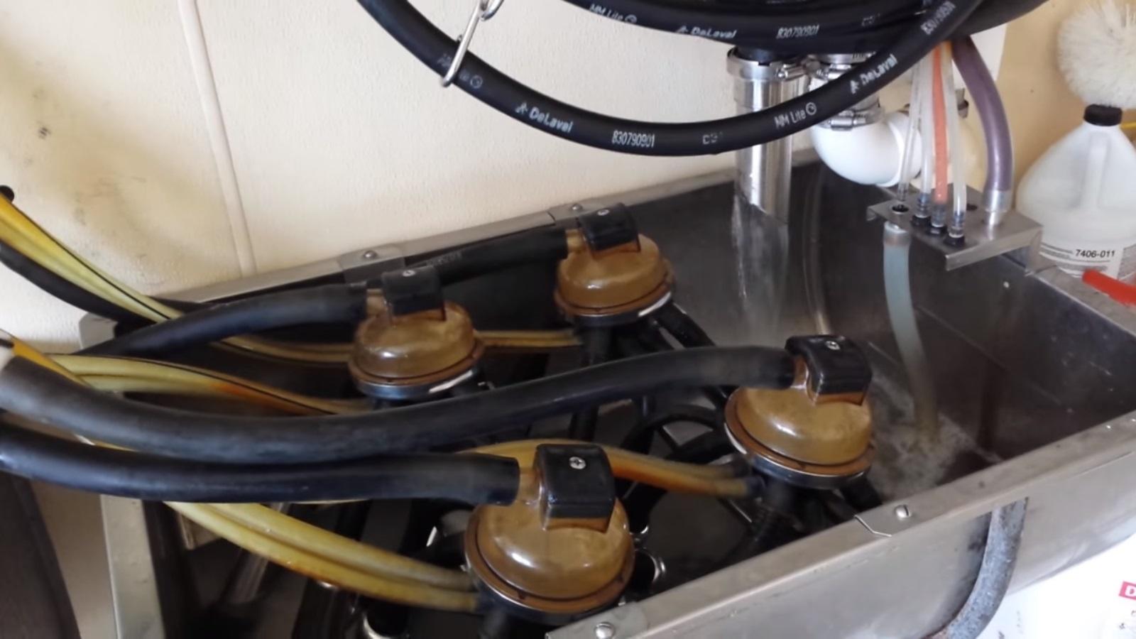 система промывки молокопровода
